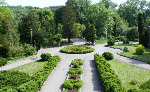 ботанический сад Южного федерального университета фотография