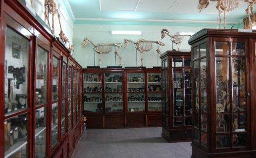 музей истории медицины в Челябинске фото