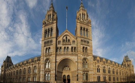 фотография музея естесствознания  в Лондоне