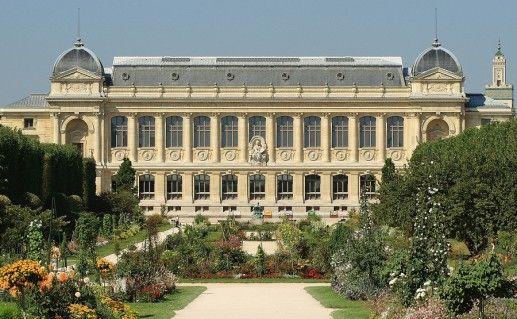 фото парижского музея естествознания