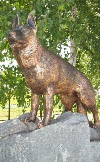 фото новосибирского памятника собаке