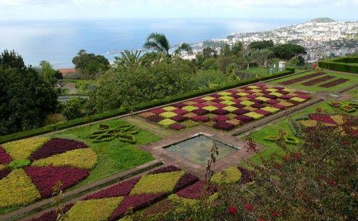 ботанические сады Мадейры фотография