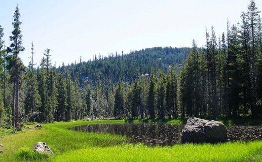 гора Янгантау в Башкирии фотография
