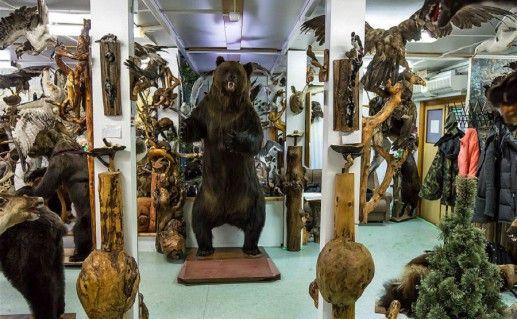 ханты-мансийский музей Природы и человека внутри фотография