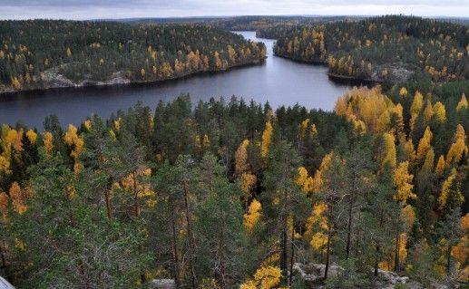 национальный парк Реповеси в Коуволе фотография