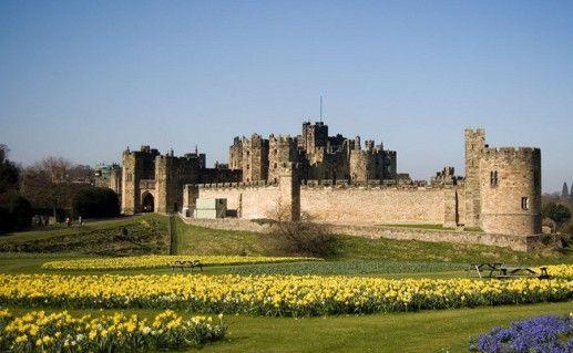 вид на замок Эник в Англии фотография
