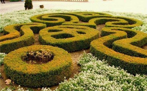 Бакинский ботанический сад фото