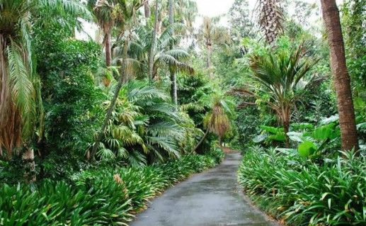 Королевские ботанические сады фотография