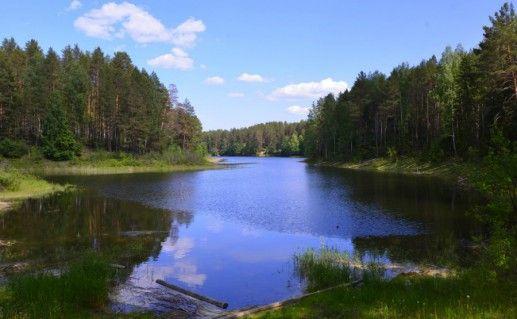 Фото национальный парк «Марийский лес» («Марий Чодра»)