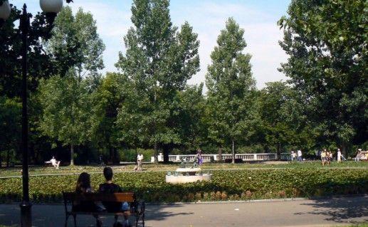 Фотография парк Борисова Градина