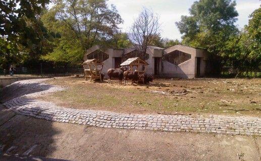 Фото Софийский зоопарк