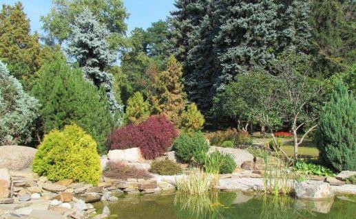 Ботанический сад в Каменец-Подольском фотография