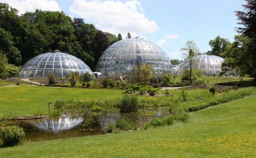 ботанический сад университета в Цюрихе фотография