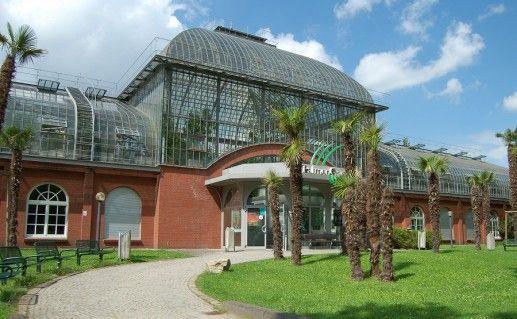 ботанический сад во Франкфурт-на-Майне фотография