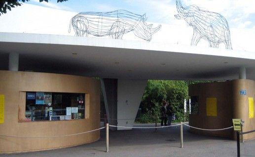 фото зоопарка в Цюрихе