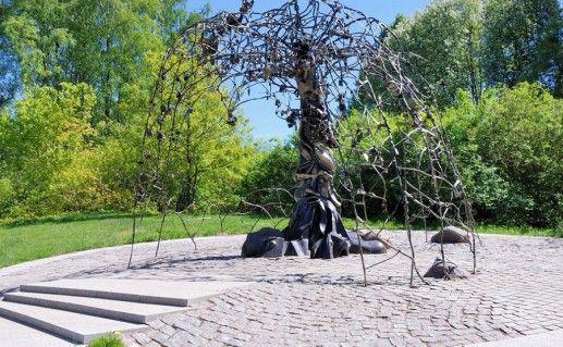 древо счастья в Зеленогорске фото