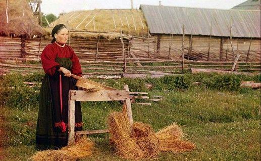 Фотография выставки в Можайском историко-краеведческом музее