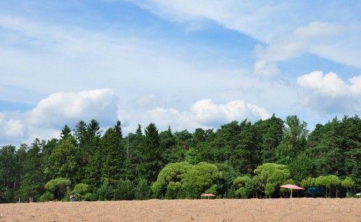фотография золотого пляжа в Зеленогорске
