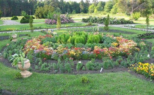 фото ботанического сада минской академии наук