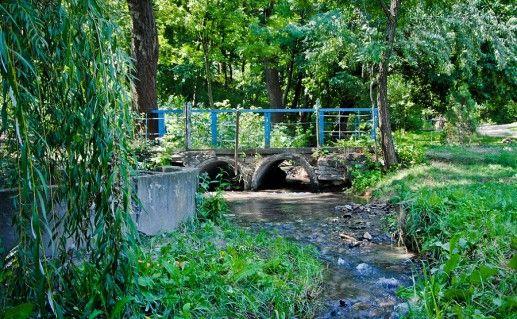 фотография ботанического сада ЮФУ в Ростовской области