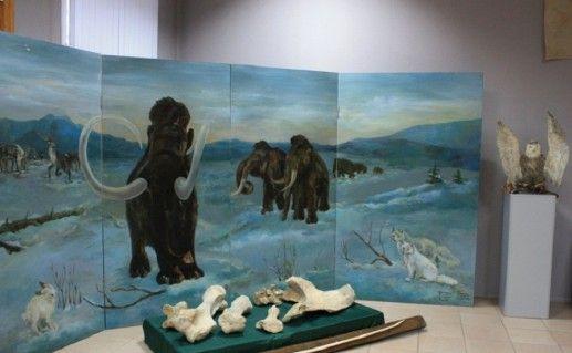 фото экспонатов воронежского музея Костенки