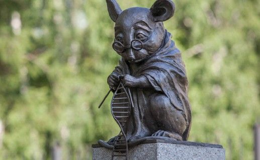 фотография памятника лабораторной мыши в Новосибирске