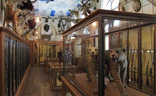 экспонаты в музее охоты и природы в Париже фото