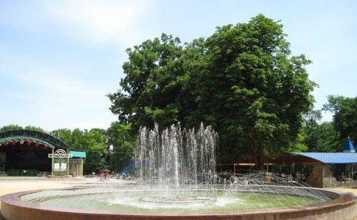 фотография парка Горького в Таганроге