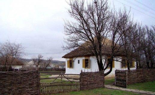 станица Каргинская в Ростовской области фотография