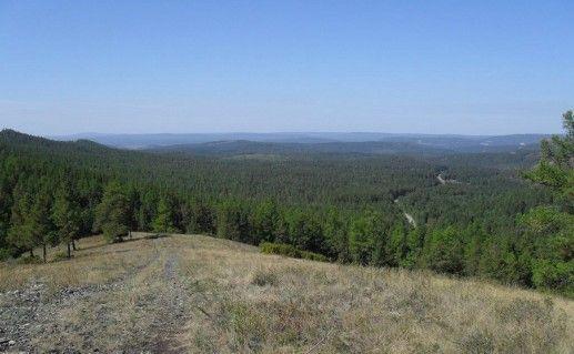 Башкирский государственный природный заповедник фото