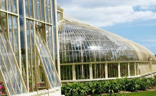 Национальный ботанический сад в Дублине фото