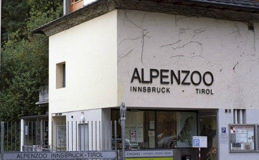 Альпийский зоопарк фото