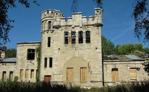 Дворец в Борках фотография