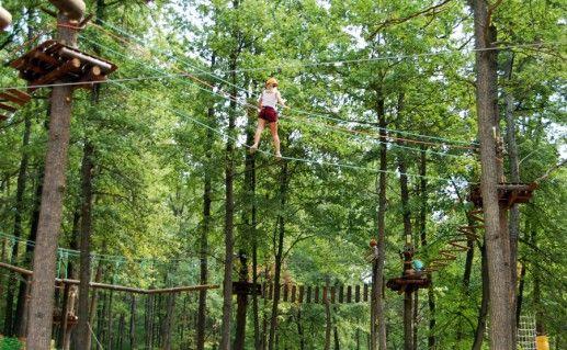 Форест-парк в Липецкой области фото