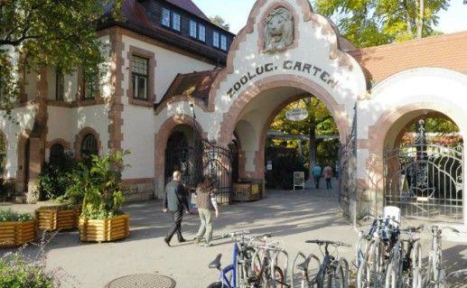 Фото лейпцигский зоопарк
