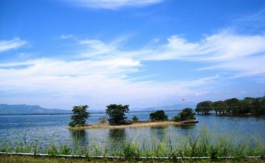 Национальный парк Удавалаве фото