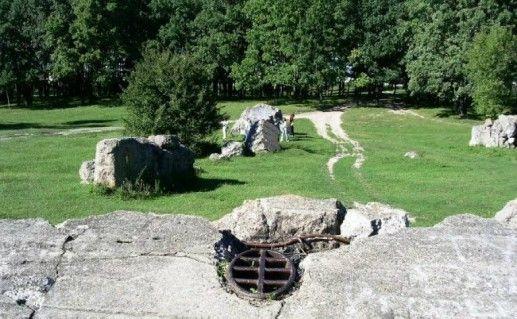 Руины бункера «Вервольф» фото