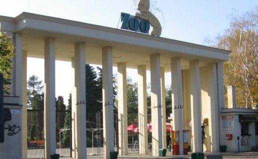 Вроцлавский зоопарк фотография