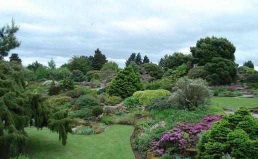 Королевский ботанический сад фотография