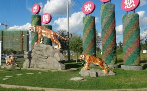 Сафари-парк тигров фото