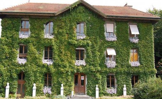 ботанический сад в Женеве фото