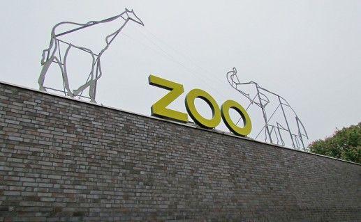 зоопарк в Кельне фотография