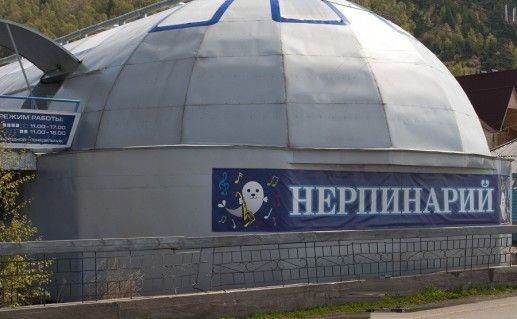 фото иркутского нерпинария