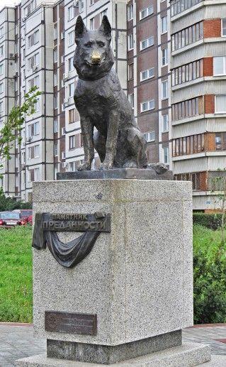 памятник псу Верному в Тольятти фотография