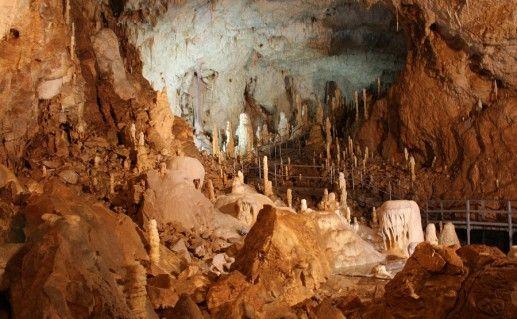 пещера медведей в Румынии фотография