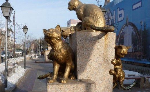 фото сквера сибирских кошек в Тюмени